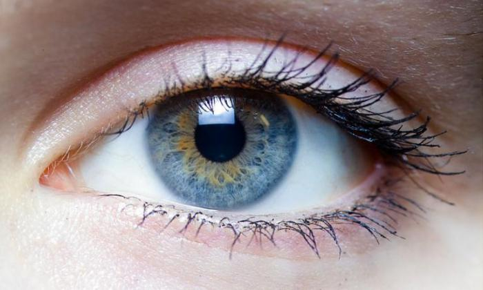 Light gray eyes  The effect of eye color on a person's